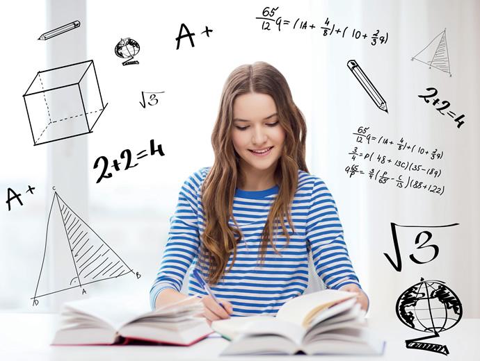 Lise Eğitimi